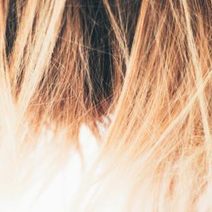 Das lange gesunde Haar